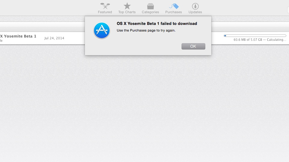 OS X Yosemite Beta 1 failed to download